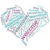 Översätta teman och plugins i WordPress